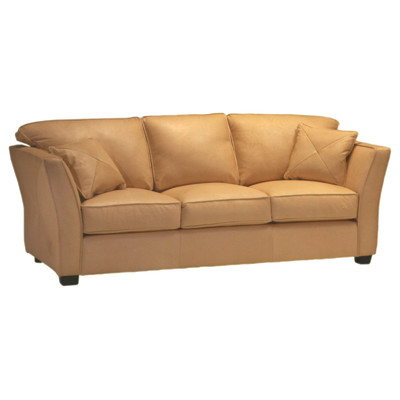 Omnia Furniture Manhattan Leather Sleeper Sofa